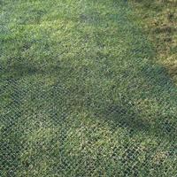 Grass Reinforcement
