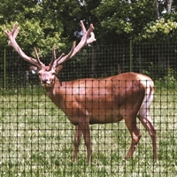 Deer Netting