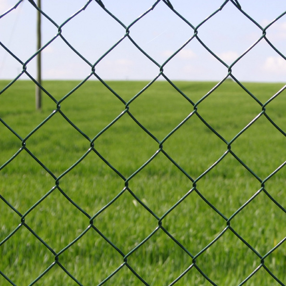 Green Pvc Coated Galvanised Chain Link Fence 10m