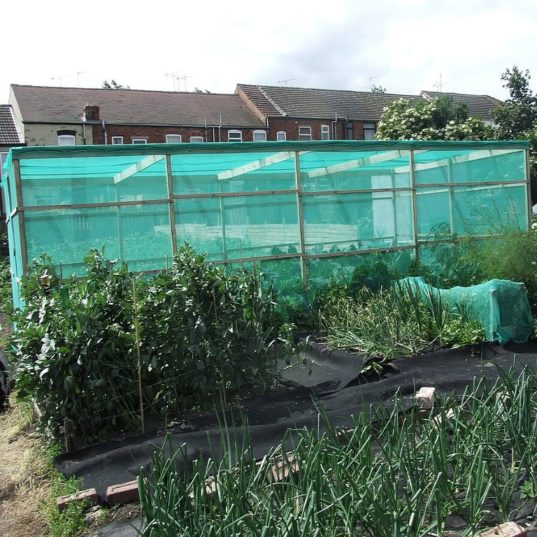 Green scaffold debris netting 50m roll x 1m 2m or 3m for Fenetre 2m x 1m