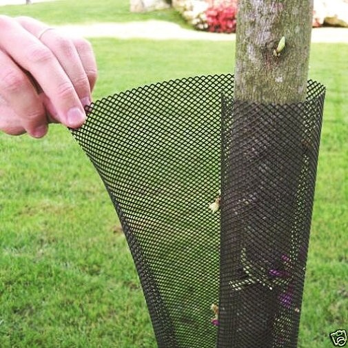 Expanding Tree Guard Protector - 5 or 100 pk