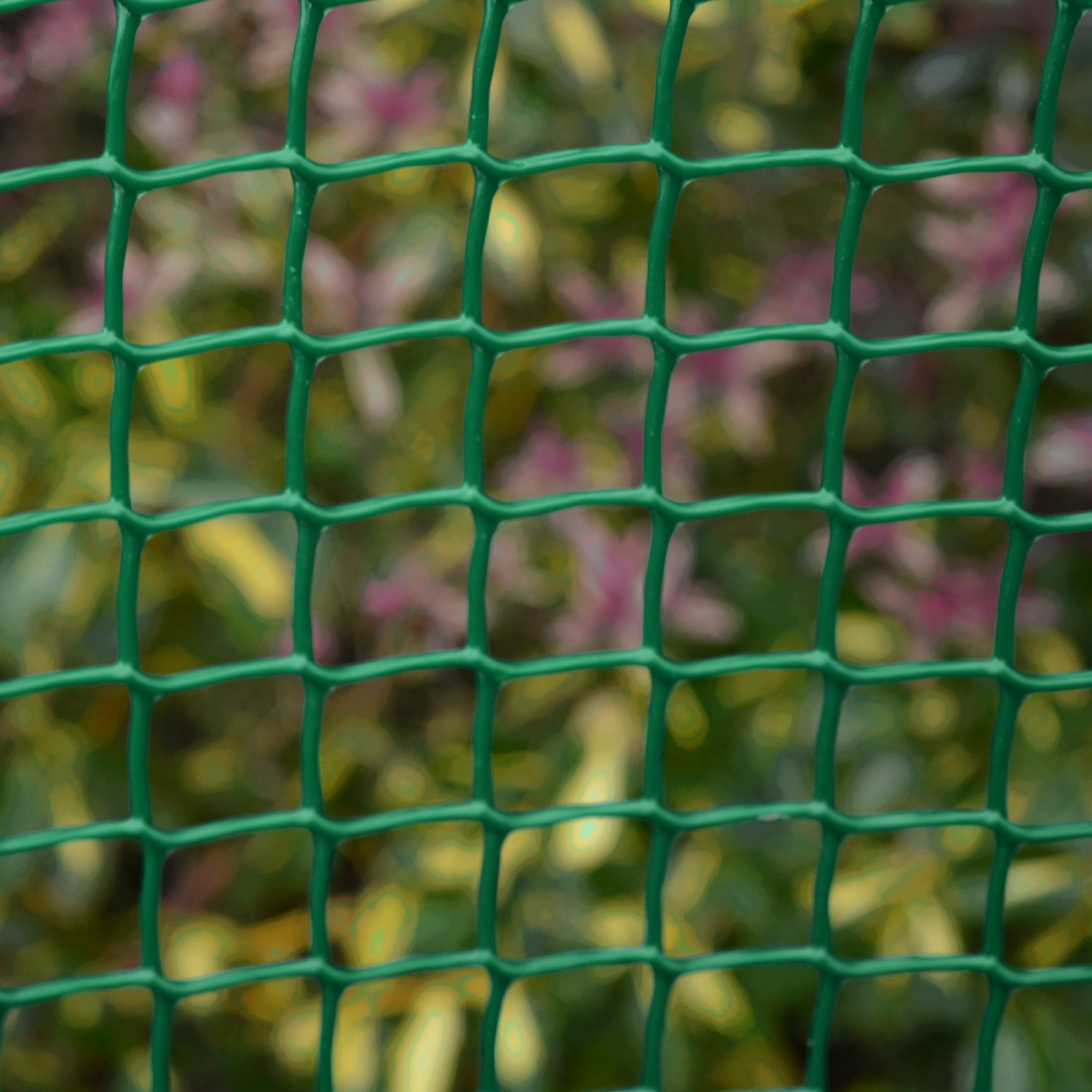 Climbing Plant Support Mesh - 19mmx19mm - 0.5m Wide