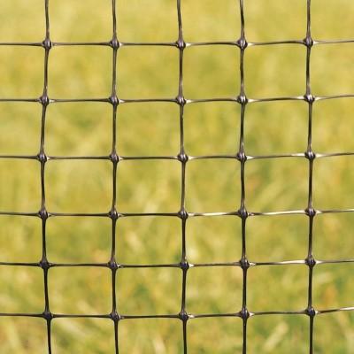 Pheasant Netting Small - 100m