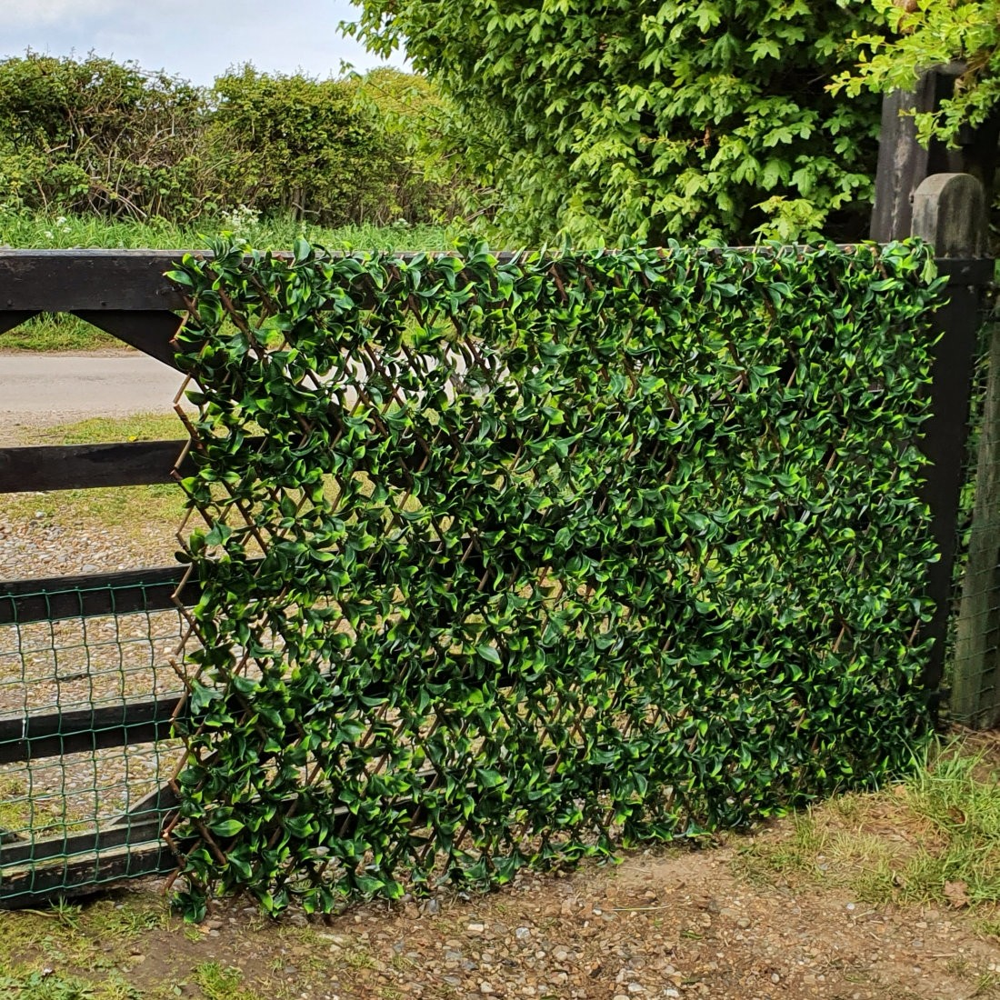 Artificial Variegated Laurel Expanding Willow Trellis Hedge