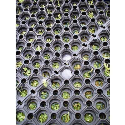 Safegrass Rubber Play Mats 1m x 1.5m
