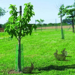 Tree Guard Pack of 10 - Green - 50cmx12.5cm
