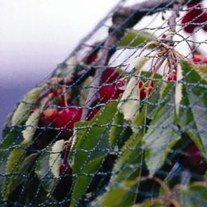 Knitted Tape Anti-Bird Netting Green - 100m roll