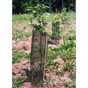 Protect plus Guard 14cm x 50cm Tree Gaurd