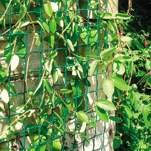 Climbing Plant Support Mesh Green - 0.5m or 1m Wide