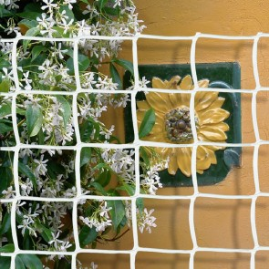 Climbing Plant Support Mesh - 44mmx44mm - 1m Wide - WHITE