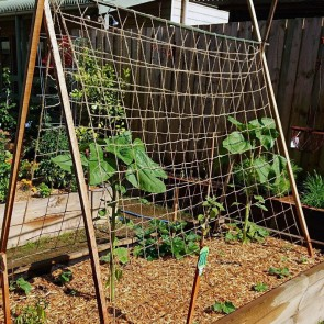 Biodegradable Heavy Duty Pea & Bean Jute Netting