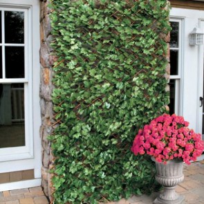 Artificial Maple Leaf Ivy on a Willow Trellis 1m x 2m - Expandable