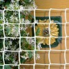 Climbing Plant Support Mesh - 44mmx44mm - White