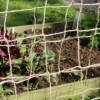 Biodegradable Natural Jute Pea and Bean Netting